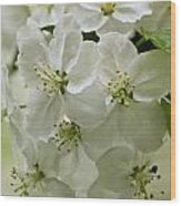 Angelic Blossom Wood Print
