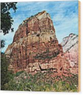 Angel's Landing Wood Print