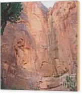 Angels Landing From Valley Wood Print