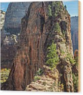 Angels Landing In Zion Wood Print