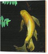 Angels Of Water.... Wood Print by Jinx Farmer