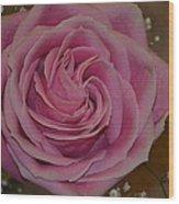 Angel's Pink Rose Wood Print