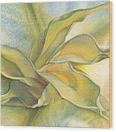 Angel's Pirouette Wood Print