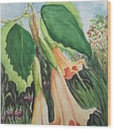Angel's Trumpet Exotica Wood Print