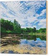 Angrignon Park Landscape 1 Wood Print