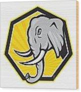 Angry Elephant Head Side Cartoon Wood Print