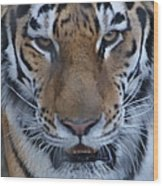 Angry Wood Print