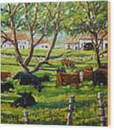 Angus Cows Under The Cool Shade By Prankearts Wood Print