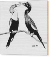 Anhinga Pair Wood Print