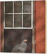 Animal - Bird - Chicken In A Window Wood Print