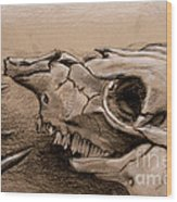 Animal Bones Wood Print