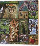 Animal Collage Wood Print