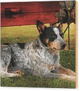 Animal - Dog - Always Faithful Wood Print by Mike Savad
