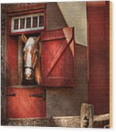 Animal - Horse - Calvins House  Wood Print by Mike Savad