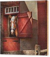 Animal - Horse - Calvins House  Wood Print by Mike Savad