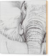 Animal Kingdom Series - Gentle Giant Wood Print
