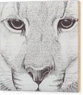 Animal Kingdom Series - Mountain Lion Wood Print
