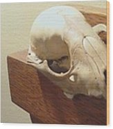Animal Skull Mantel 1 12 2011 Wood Print