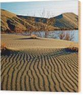 Animal Tracks In The Sand Wood Print