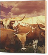 animals - cows- Longhorns La Familia  Wood Print