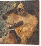 animals - dogs - Faithful Friend Wood Print