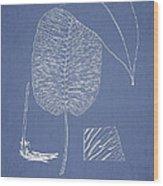 Anisogonium Cordifolium Wood Print