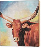 Ankole Bull Wood Print