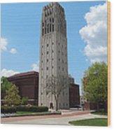Ann Arbor Michigan Clock Tower Wood Print