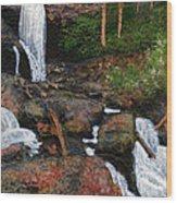 Anna Ruby Falls Wood Print