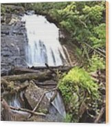 Anna Ruby Falls - Georgia - 4 Wood Print