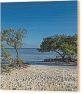 Annes Beach Wood Print