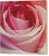 Anniversary Rose Wood Print