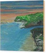 Ann's Beach On Lake Erie Wood Print