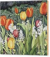 Ann's Tulips Wood Print