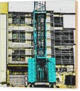 Another Blue Crane  Wood Print