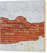 Another Brick In The Wall Wood Print by Lorraine Heath