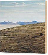 Another Color View Of West Texas Wood Print