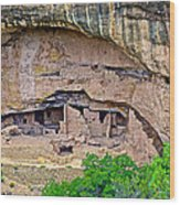 Another Dwelling On Chapin Mesa In Mesa Verde National Park-colorado  Wood Print