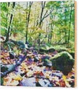 Another Enchanted Forest Wood Print