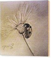 Another Ladybug Wood Print