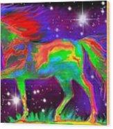 Another Rainbow Stallion Wood Print