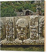 Another Relief In Myra-turkey Wood Print