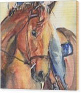 Horse In Watercolor Another Sunrise Wood Print