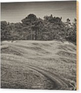 Another View Of Seven Wood Print
