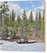 Another Winter Passes In The Yosemite High Country Wood Print