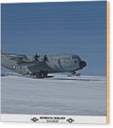 Antarctic Take-off Wood Print by David Barringhaus
