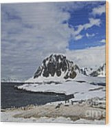 Antarctic Wilderness... Wood Print