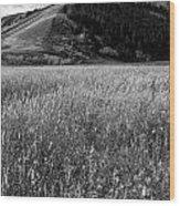 Antelope Flats Wood Print