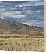 Antelope Island Camera Flats Wood Print