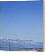 Antelope Island Causeway Utah  Wood Print